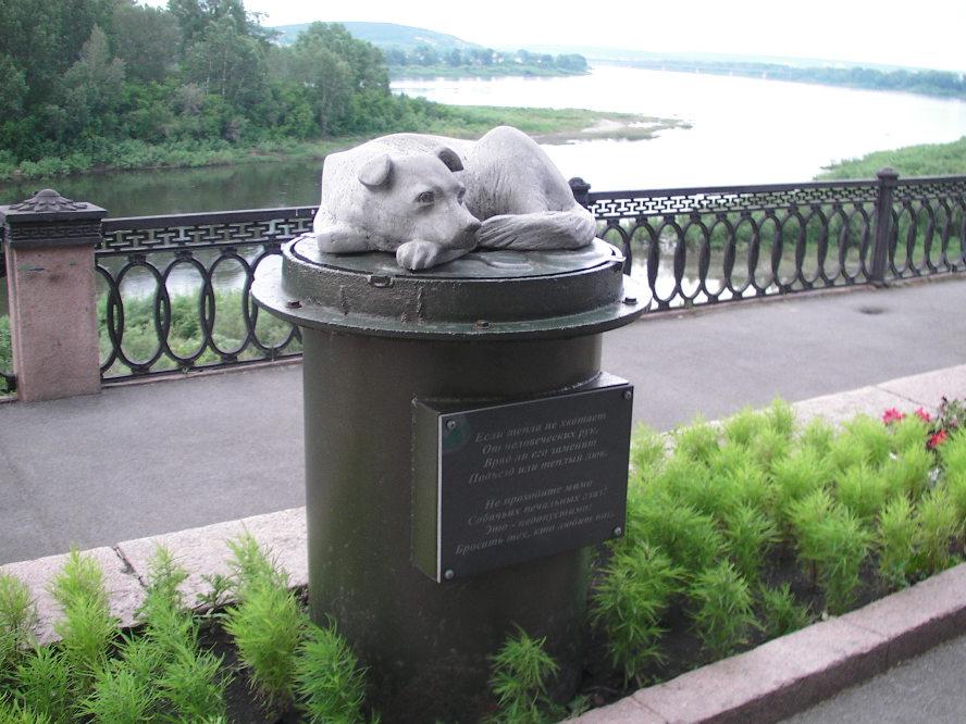 Памятник бездомной собаке кемерово недорогие памятники москва к Волгодонск